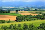 Biei countryside, Hokkaido