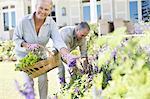 Senior couple picking flowers in garden