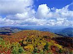 Mt. Mominuka, Gifu, Japan