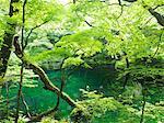 Fukaura, Aomori, Japan