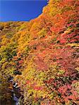 Sengan Gap, Iwate