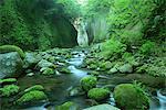 Yufugawa Valley, Oita, Japan