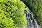 Ichinotaki Falls, Akita, Japan
