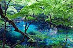 Pond Of Wakitsubo, Aomori, Japan