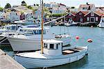 View of moored fishing boats, Fjallbacka, Bohuslan, Sweden