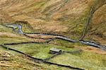 Pastures in rural landscape