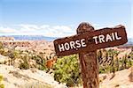 Horse Trail sight at Bryce Canyon, USA