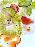 Batavia lettuce salad on a white background
