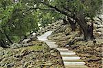 Steps to Moni Tsampika, Rhodes, Dodecanese, Aegean Sea, Greece, Europe
