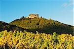 Hambach Castle and Vineyard Landscape, near Neustadt, German Wine Route, Rhineland-Palatinate, Germany