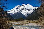 Mount Tronador, Parque Nacional Vicente Perez Rosales, Patagonia, Chile