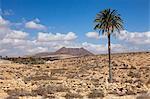 Volcano Caldera de Gairia, near Tuineje, Fuerteventura, Canary Islands, Spain, Atlantic, Europe