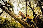 Five young women climbing tree in woods