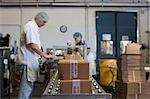 Factory workers packaging cardboard boxes