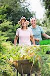 Senior couple with wheelbarrow and bucket in garden