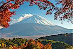 Mt. Fuji with fall Foliage in Japan.