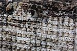 Tzompantki Altar at Templo Mayor, Mexico City, Mexico