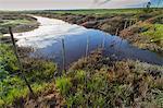Stream running through farm field, Bredasdorp, South Africa