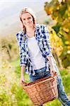 Grape harvest, young woman carrying basket, Slavonia, Croatia