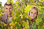 Grape harvest, Portrait of young couple, Slavonia, Croatia