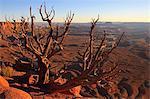 Canyon lands National Park, Utah, America
