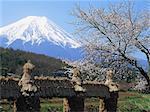 Oshino, Yamanashi, Japan