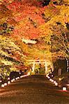 Hiyoshi Taisha Shrine, Shiga, Japan