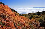 Mt. Mitake, Nagano, Japan