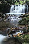 Water Cascade on Satina Creek in Beskydy Mountains, Czech Republic.