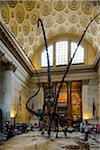 Dinosaurs' skeleton, American Museum o Natural History, Upper West Side, Manhattan, New York City, New York, USA