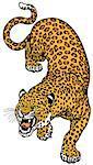 leopard tattoo illustration isolated on white background