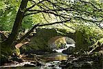 Picturesque Robber's Bridge near Oare, Exmoor, Somerset, England, United Kingdom, Europe