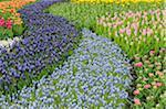 Springtime Garden Design.