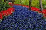 Springtime Garden Design in bulbs Kuekenhof Garden
