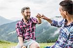 Two male friends sitting on fence, Tyrol Austria