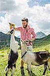 Young man feeding kid goats, Tyrol, Austria