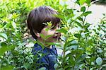 Male toddler hiding in garden hedge