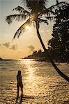 A woman underneath a palm tree on Mirissa Beach at sunset, South Coast of Sri Lanka, Southern Province, Sri Lanka, Asia