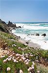 Bay of Rena Maiore at the west coast, Gallur, Sardinia, Italy, Mediterranean, Europe