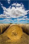 Hay Bales off Hamilton Highway, Scotmans Lead, Victoria, Australia