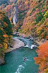 Autumn colors, Japan