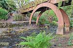 Wooden Foot Bridge Over Water Creek at Crystal Springs Garden in Springtime