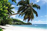 Sunny beach on Saychelles island. Mahe.