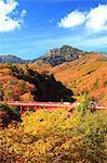 Higashisawa Bridge, Yamanashi Prefecture