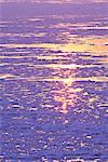 Drift ice, Hokkaido