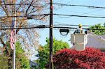 Power engineer riding in lift bucket to work on power lines, Braintree, Massachusetts, USA