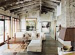 Rustic luxury living room