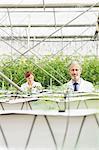 Botanists examining plants in greenhouse