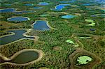Lagoons during dry season (aerial), Pantanal, Brazil