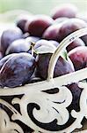 A metal basket of freshly harvested plums